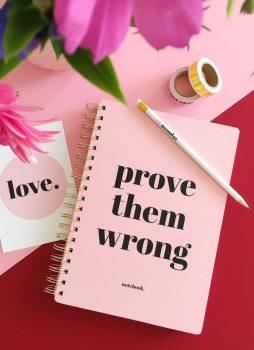 Notitieboek prove them wrong