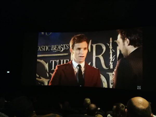 Eddie Redmayne als Newt Scamandar