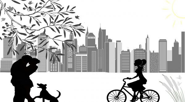 elektrische fiets als alternatief voor auto
